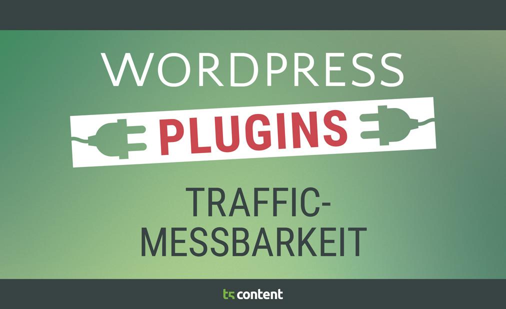 Traffic messbar machen – WordPress