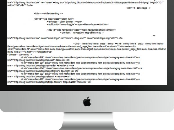 Monitor mit Quellcode, Link